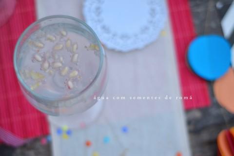 donadacasa-carnaval-agua