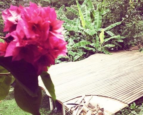 itamonte-flores