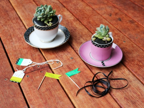 washi-tape-decoracao-cactus-planta-480x360.jpg