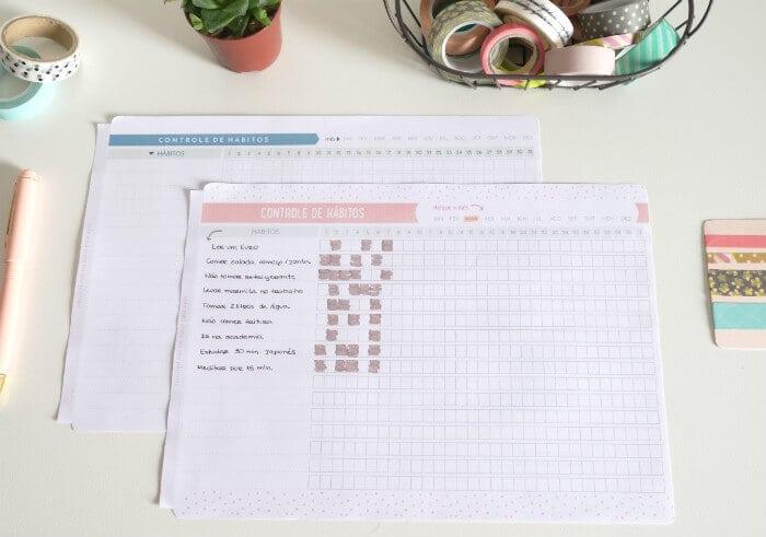 Controle de hábitos freebie printable grátis para baixar planner 3