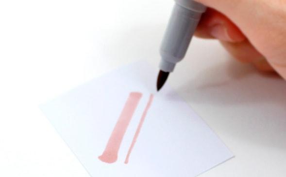 canetas ponta pincel - koi e Le Plume 3