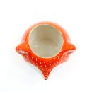 Cachepô de cerâmica – Fox laranja 3