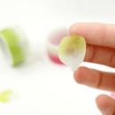 Washi tape – Pétalas verde e branco4
