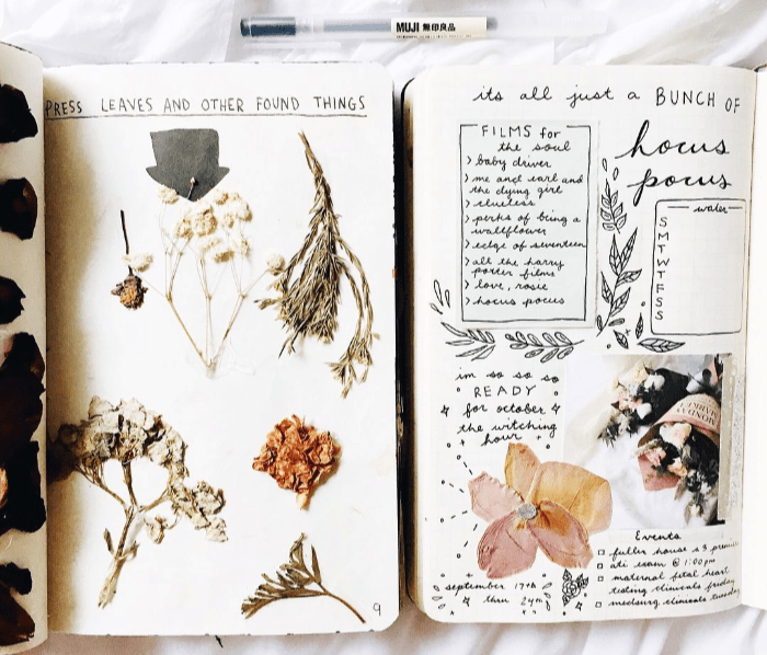 Como secar flores para decorar o bullet journal