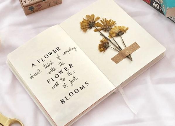 Como secar flores para bullet journal